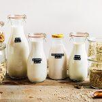 Comment préparer du lait végétal fait maison ?