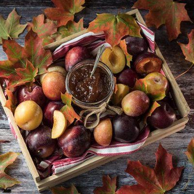 Autumn Plum Jam Recipe